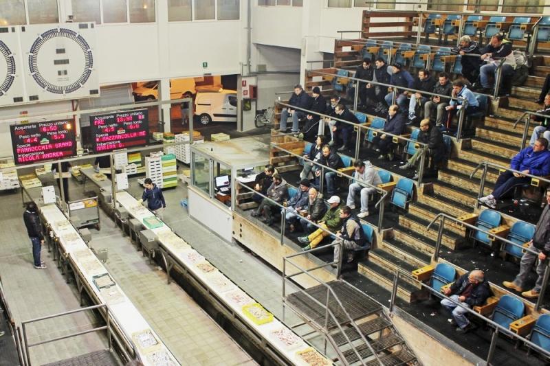la platea del mercato ittico San Benedetto del Tronto